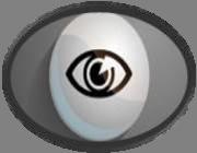 supervision_icone
